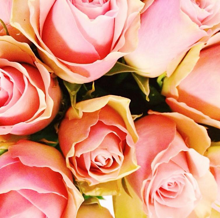 ekologisk antirynk - rosenserien