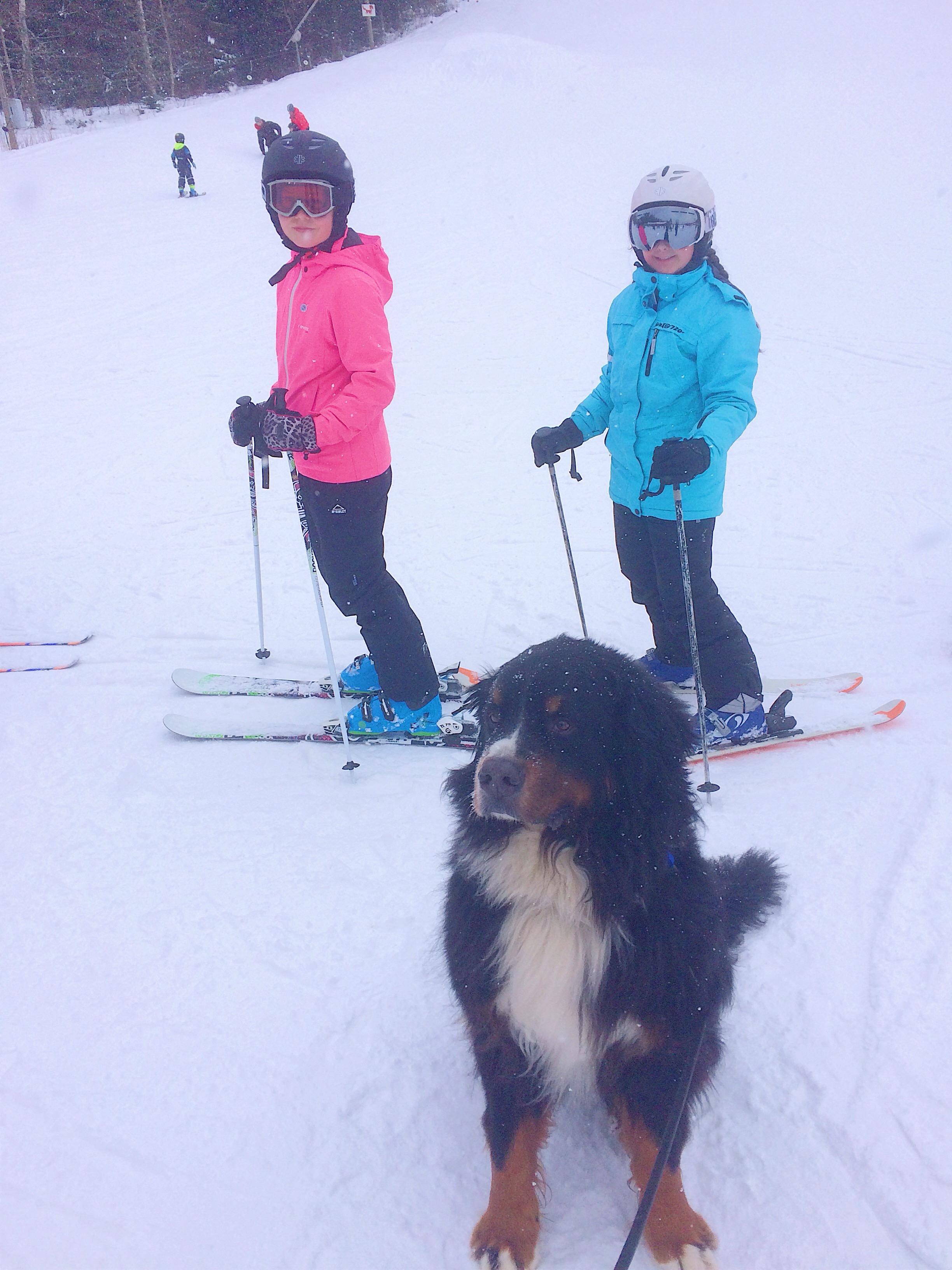 skidor - kyla - snö